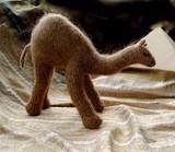 Camel.pdf-1main1
