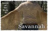 Savannah-1