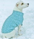 Louet-dogsweater.pdf-1main