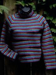 Haida_sweater.pdf-1main