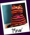 Cat_kitty_1-4
