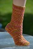 Harlequin_socks_1