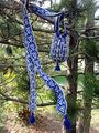 Pf5-set-in-tree
