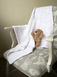 Blanket_20chair_20ted_202_20300